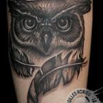 tatouage chouette